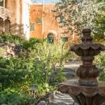 A beautiful garden fountain