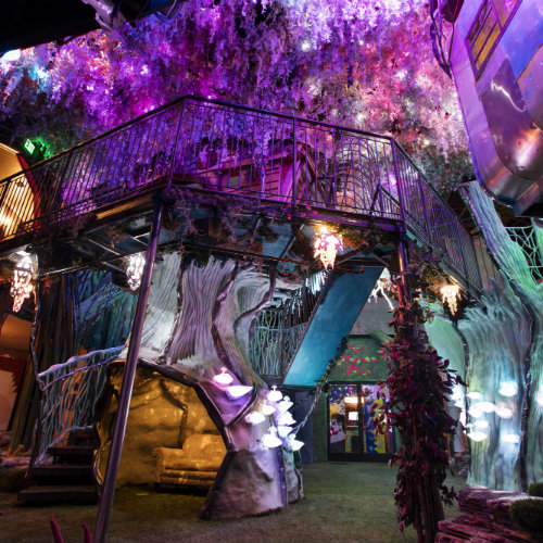 Book Now & Get 2 Free Tickets to Meow Wolf