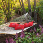 Imagine, relax and dream in our gardens