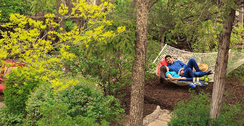Couple on a hammock