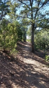 Sierra de Norte Hiking Trail